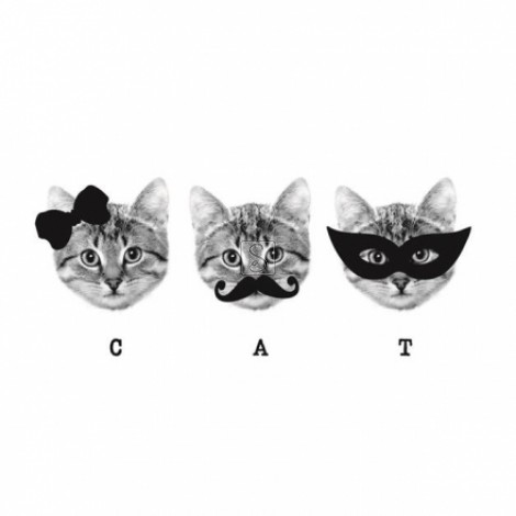 3 of a kind - Cats - Paperself