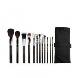 Maestro Complete 12pc. Brush Set