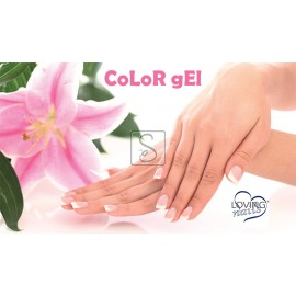 Color Gel - Professional Line